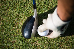 Golf club and ball in grass. On course preparing for shot Royalty Free Stock Photo
