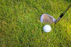 Golf club and ball in grass. Royalty Free Stock Photography