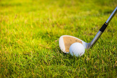 Golf club and ball in grass. Royalty Free Stock Images