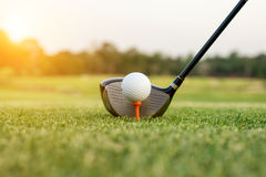 Golf club and ball in grass with sunlight. Close up at golf club Royalty Free Stock Photos