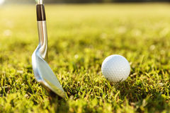 Golf club and a ball in green grass Royalty Free Stock Images