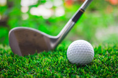 Golf club and ball on green grass Stock Photo