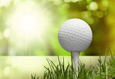 Golf. Club  Course Sport Break Frame Grass stock photos