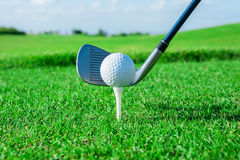 Golf club. Green field and ball in grass Stock Images