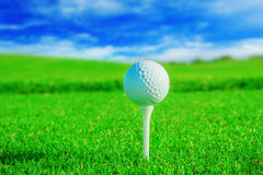 Golf club. Green field and ball in grass Stock Image