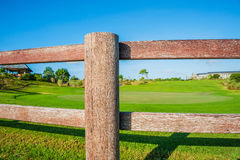 Golf club. Green field and ball in grass Royalty Free Stock Images