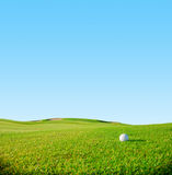 Golf club. Green field and ball in grass Stock Photography