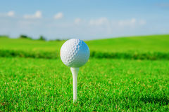 Golf club. Green field and ball in grass Stock Photos