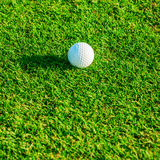 Golf club. Green field and ball in grass Royalty Free Stock Photo