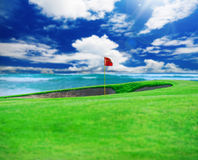 Golf club. Green field and ball in grass Royalty Free Stock Photos