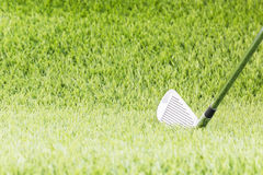 Golf club on green grass Stock Images