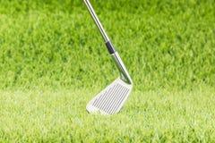 Golf club on green grass Stock Photos