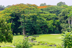 Golf club at the Philippines Stock Photography