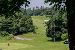 Golf club at the Philippines. Green in golf club at the Philippines Royalty Free Stock Photo
