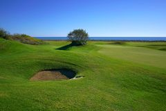 The golf club with sea view stock photo