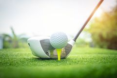 Golf clubs and golf balls on a green lawn in a beautiful golf course stock photo