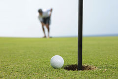 Golf concentration royalty free stock photo