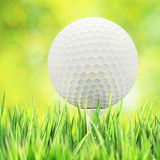 Golf concept Stock Photography
