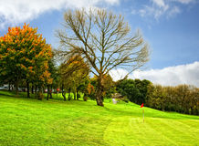 Golf course. Beautiful Golf Course  in the autumn Stock Image
