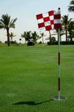 Golf course. Checked flag on the golf course. Dubai. U.A.E Stock Image