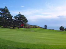 Golf course. Green grass of golf course located on an ocean shore Stock Images