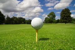 Golf course. Ball view for the golf course with flag Stock Photography