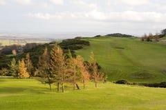 Golf course. In Edinburgh (Scotland, United Kingdom Stock Images