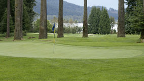 Golf Course. Golf green in the woods at Sandpiper Golf Course Royalty Free Stock Photo