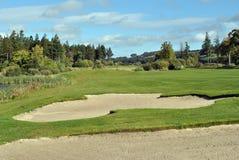 Golf course. Picturesque scene in autumn on  a parkland golf course Stock Photos