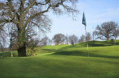 Golf course. In morning winter sunshine (long shadows stock photography