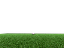 Golf course. Made in 3d Stock Photography