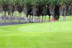Golf course. Green golf field with red flag royalty free stock image