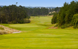 Golf course. A golf course located with nice green grass Stock Photography