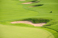 Golf course. The green grass and bunker on a golf course Royalty Free Stock Image