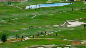 Golf course. Aerial shot stock images