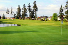 Golf course. Under sunlight in the northwest Stock Photos