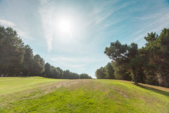 Golf Course. Morning and the colf course Stock Images