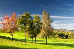 On the golf course. In autumn in Prague Stock Image