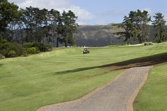 Golf course. African golf course, green blue, sunny Stock Photos