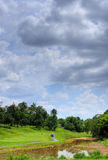 At a golf course. A view of a golf course Royalty Free Stock Photography