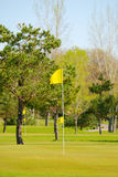 Golf Course. Flag on the green of a golf course Royalty Free Stock Image