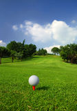 Golf course. A golf ball is ready on the tee Royalty Free Stock Image