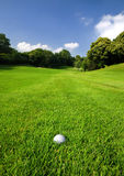 Golf course. Golf ball in the rough of a golf course Royalty Free Stock Photography