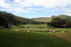 Golf course. In South Africa Royalty Free Stock Photo