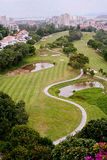Golf Course. Several golfer putting at Bukit Jambul Golf Course in Penang Malaysia Stock Photo