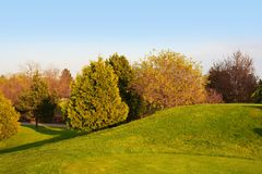 Golf course. Rolling grassy hills at a golf course Stock Photography
