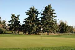 Golf Course. Golf Green Royalty Free Stock Photos