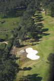 Golf course. Aerial golf course stock photos