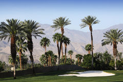 Golf course at the ANA inspiration golf tournament 2015 Royalty Free Stock Photography