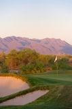 Golf course in the Arizona desert. With mountains in the late afternoon sun Stock Images